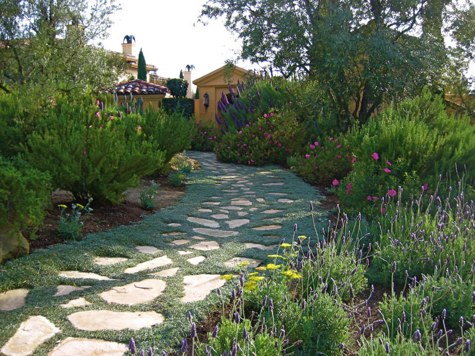 how much landscape design cost