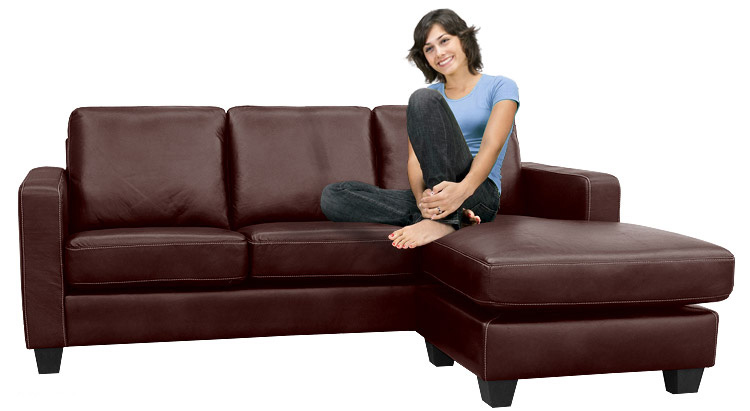 2 leather sofa ideas for living room Leather Sofa ideas for living room