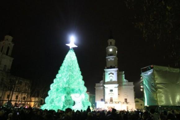 6 eco friendly christmas tree by jolanta smidtiene Eco friendly Christmas Tree by Jolanta Smidtiene