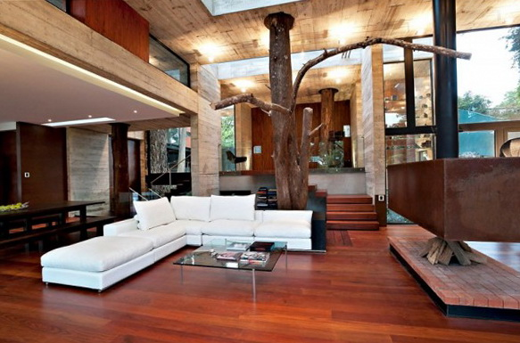 1 corallo residence with tree running through the living room Corallo Residence With Tree Running Through The Living Room