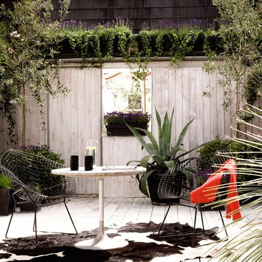 Small Garden Ideas 539 x 539