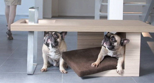 Contemporary Coffee Table with Bed for Pet