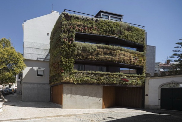 1 Vertical Garden Portugal House with Vertical Garden