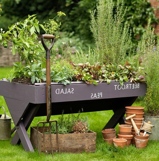 Country Gardens – Best Ideas
