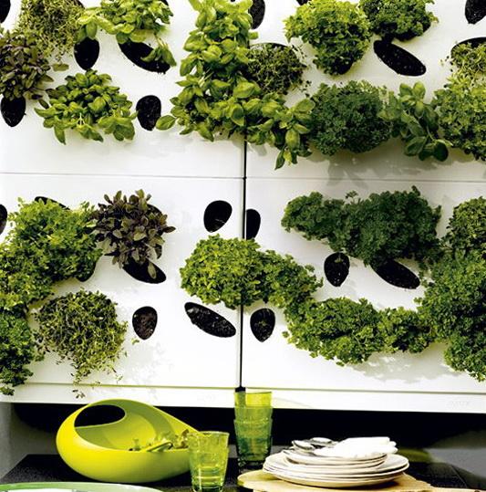 Potted Herb Garden Design Photograph herb garden wall we l