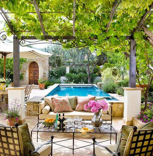 Growing Grapes As A Part of the Home Landscape or Garden