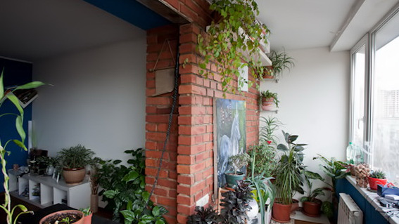 3 many plants Apartment of a Recycling fan Green and Eco Friendly