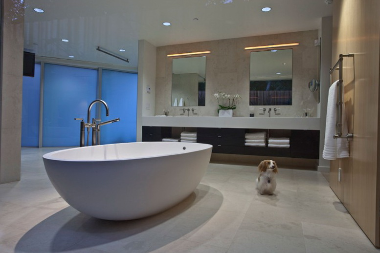 6 dog and bath California Contemporary by Rozalynn Woods Interior Design