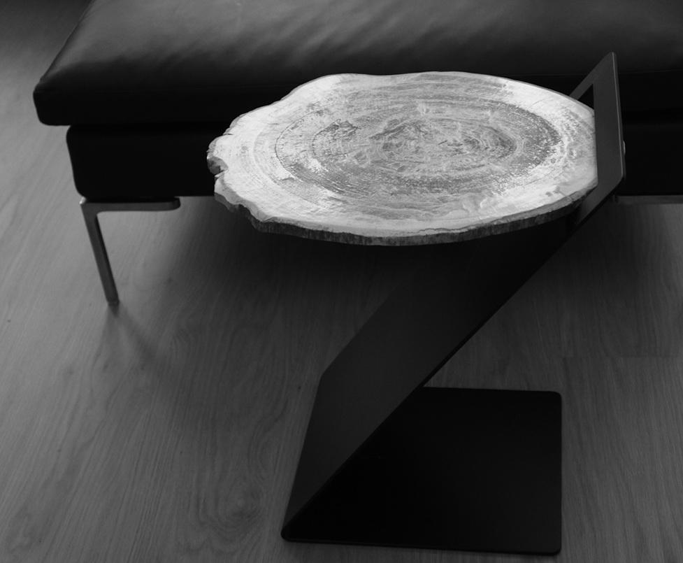 Petrified Wood Side Tables By Stephane Michaelis Home