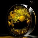 1-the-porthole-glass-infuser