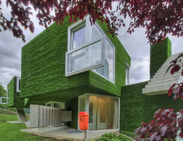 3-green-house