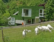 Unusual Family Home with Synthetic Grass in Frohnleiten