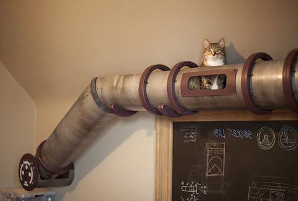 1-creative-spaces-designed-for-your-cat