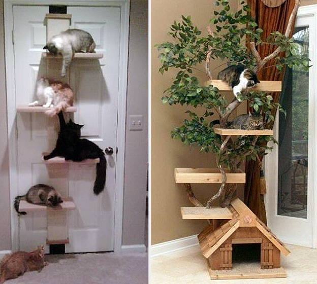 3-furniture-for-pets