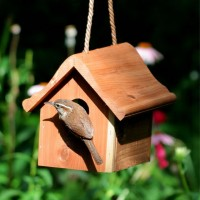 Perky-Pet Wren Home - bird house