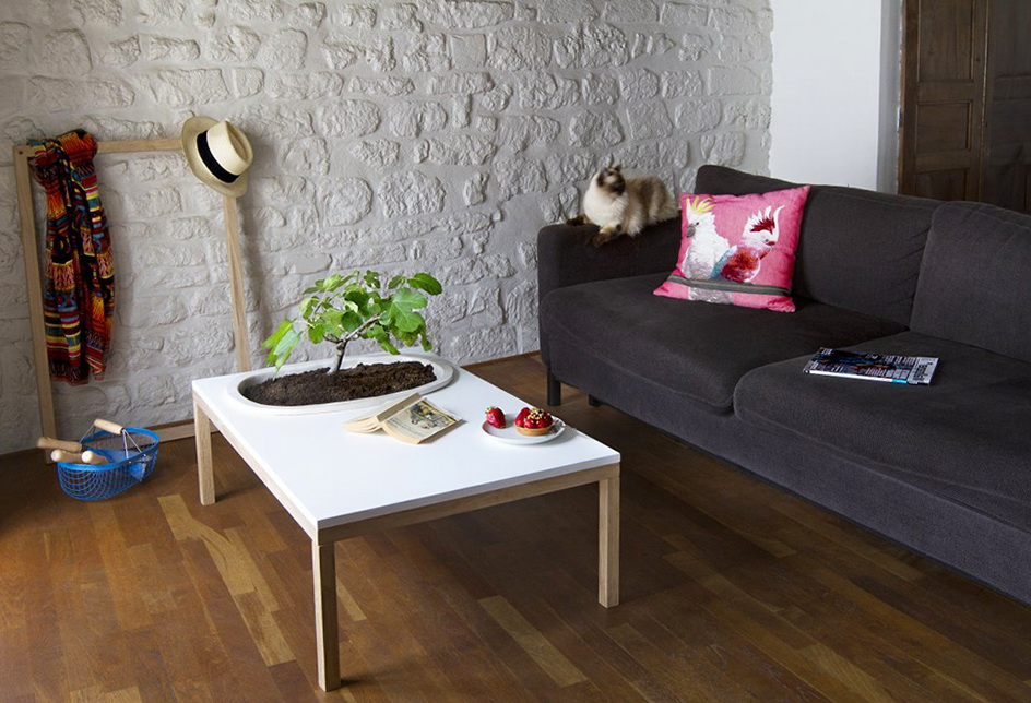 Delicieux Beautiful Coffee Tables With Plants