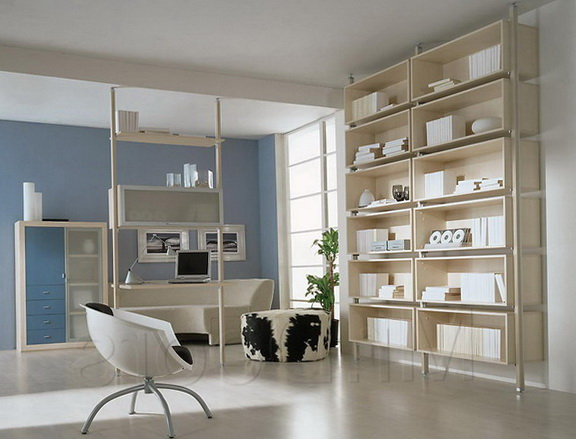 10-to ceiling bookcase