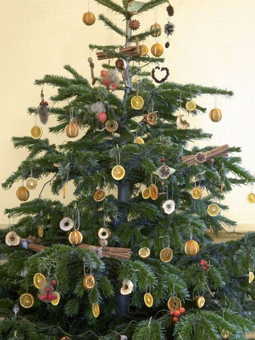 3-Christmas tree with dried fruit