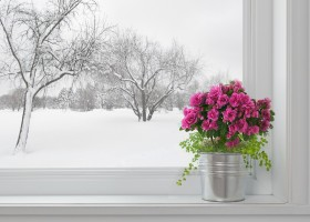 0-first-floor-winter-view-from-the-window