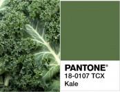 Top Trend 2017: Kale Color