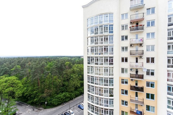 11-panoramic-forest-view