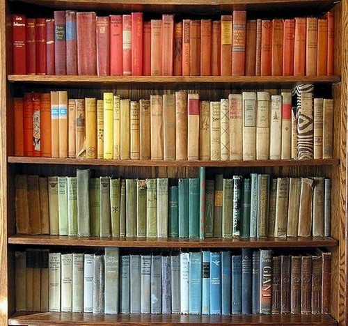 12-home-library-ideas-book-storage-of-similar-color-on-shelves