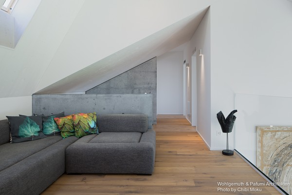 12-swiss-minimalist-modern-interior-hallway-concrete-walls-gray-corner-sofa