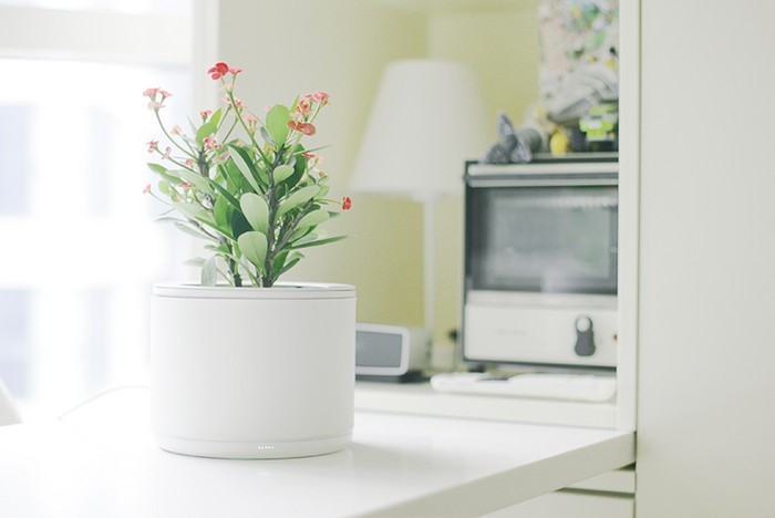 14-smart-home-garden-device-thing-planty