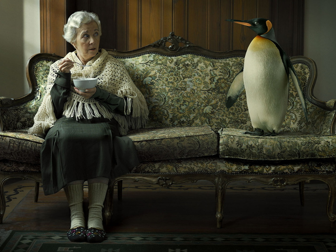 2-interior-for-elderly-woman-on-couch-funny