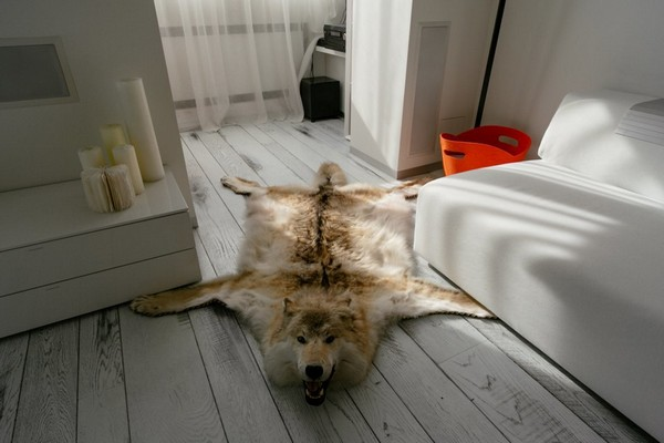 20-wolf-skin-on-the-floor