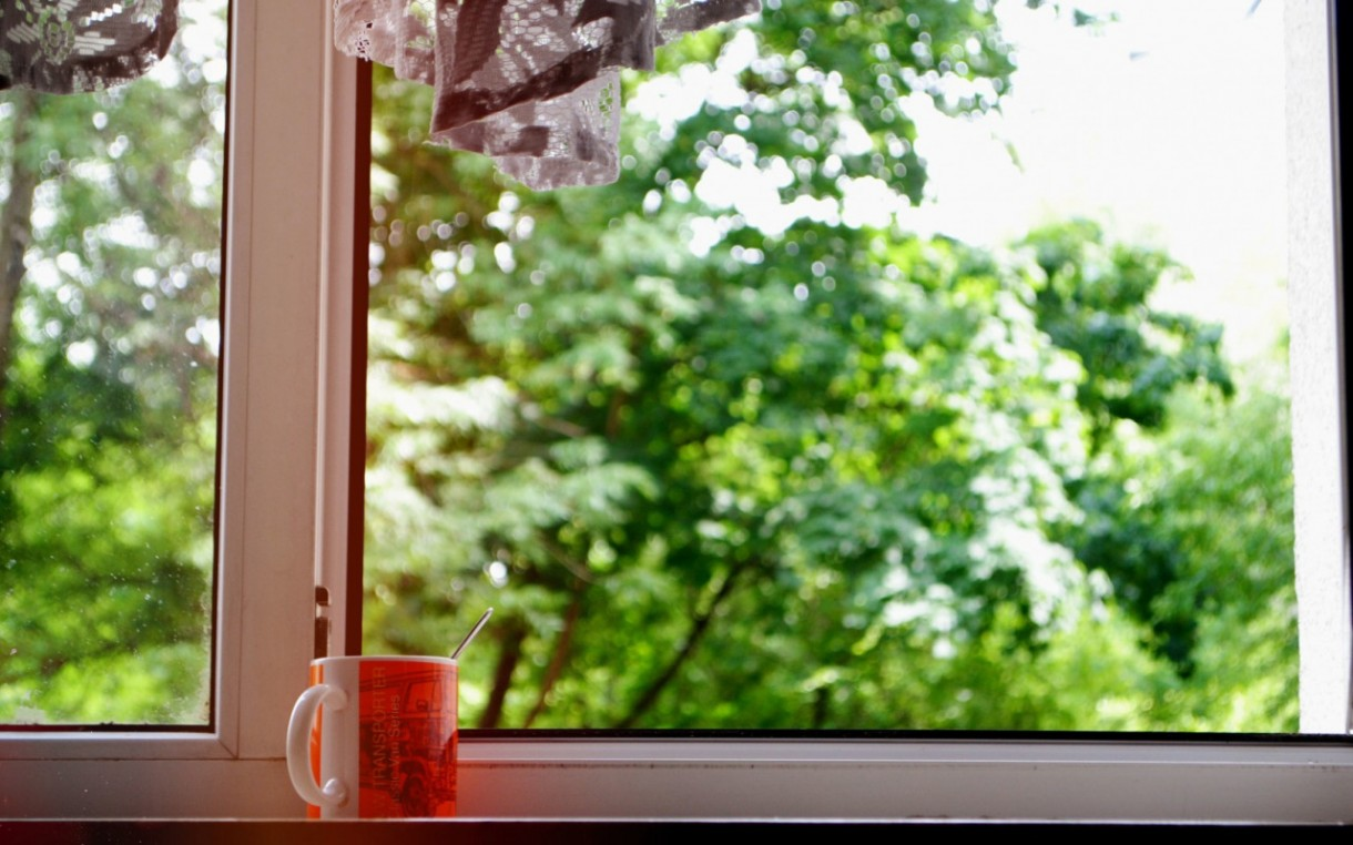 3-view-from-the-window-green-trees-cup-of-tea