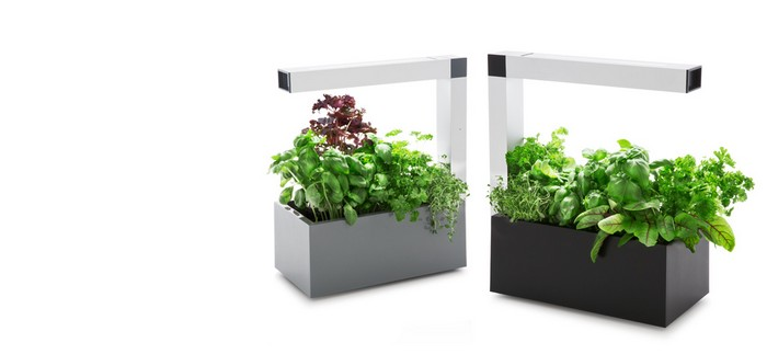 Planted forgotten innovative gadgets for our indoor for Indoor gardening gadgets