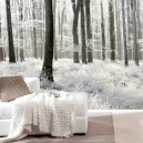 7-winter-forest-photo-wallpaper-wall-mural-printing-in-interior-design