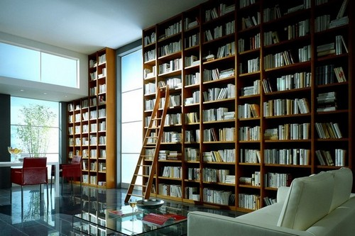 8-home-library-ideas-ladder-wall-to-wall-big-book-storage