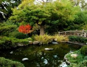 How to Arrange a Japanese Garden: Golden Rules