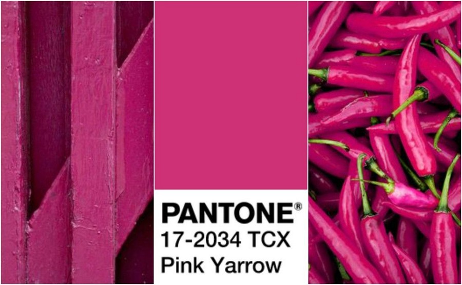 Top Trend 2017: Pink Yarrow Color | Home Interior Design