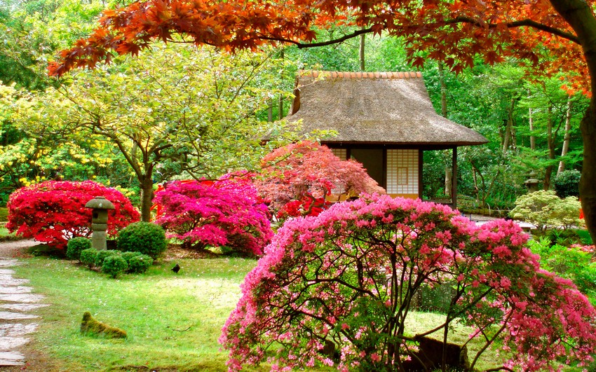 how to arrange a japanese garden choosing the right plants  home, Natural flower
