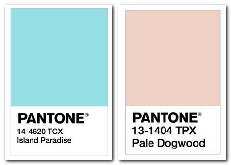 2-pantone-colors-island-paradise-light-blue-pale-dogwood-powder-pink-pastel-color