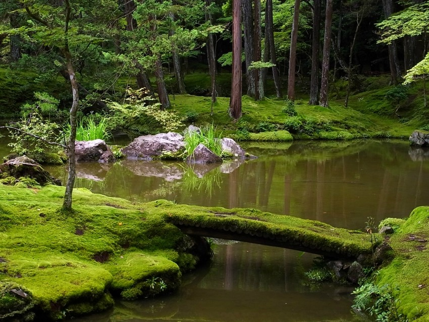 3-1-beautiful-Japanese-garden-pond-moss-bridge