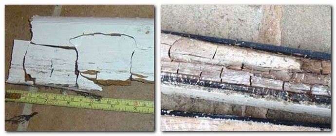 3-dry-rot-causing-cracking-in-timber