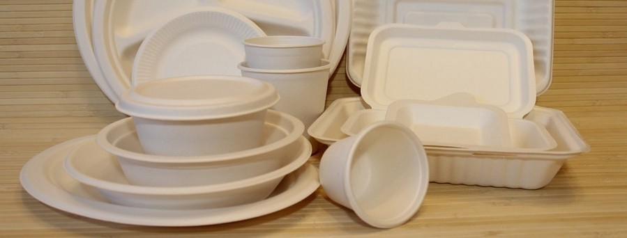 3-eco-friendly-non-toxic-natural-single-use- & Eco-Tableware from Sugar Cane | Home Interior Design Kitchen and ...