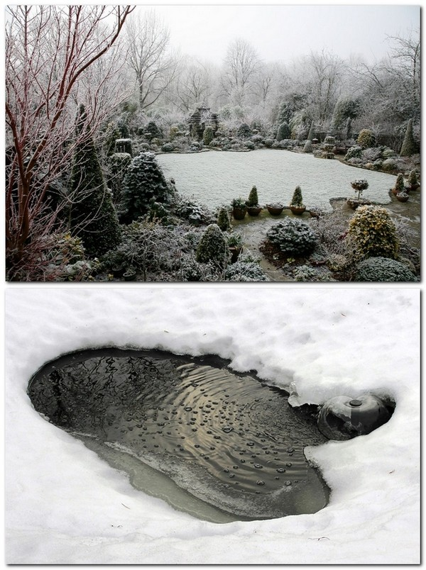 4-garden-pond-in-winter