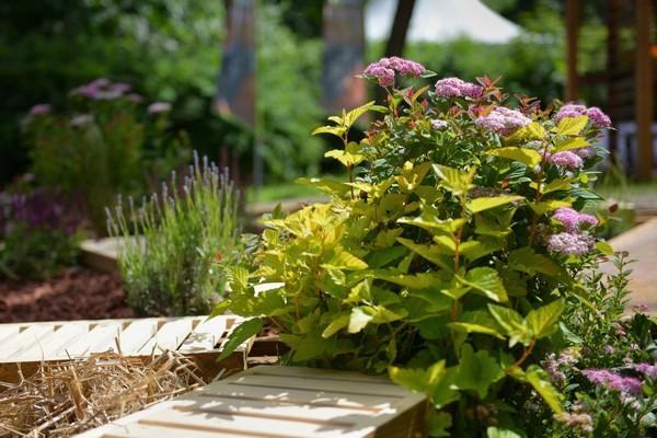 6-mobile-sensory-garden-in-big-city-park