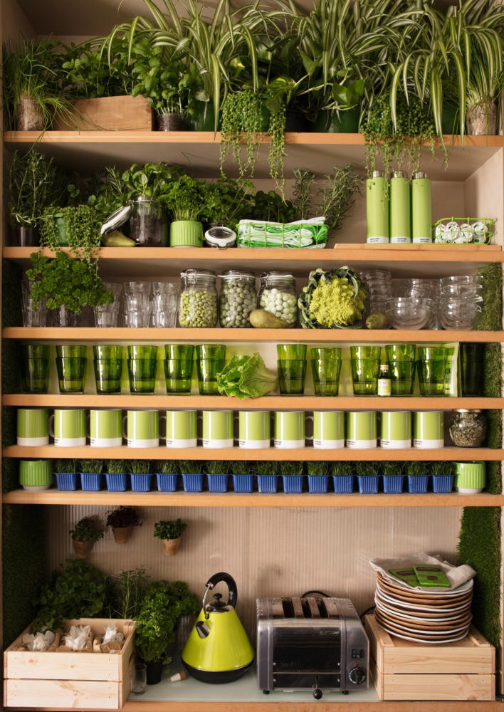 12-green-eco-naturalistic-style-house-for-rent-by-Pantone-Airbnb-London-greenery-potted-plants-interior-design-kitchen-shelves-kettle-pots-cans