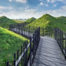 2-Biesbosch-national-park-museum-with-green-living-roof-in-Netherlands