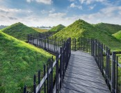 Spectacular Green Roof Museum in Holland
