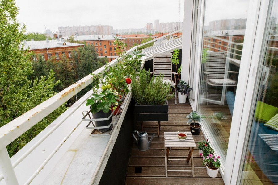2-many-potted-indoor-plants-on-the-balcony-desogn-growing-tomato-strawberry-flowers-panoramic-window