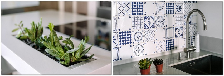 3-3-minimalist-style-white-walls-and-gray-apartment-interior-design-potted-plants-succulents-blue-and-white-backsplash-tiles