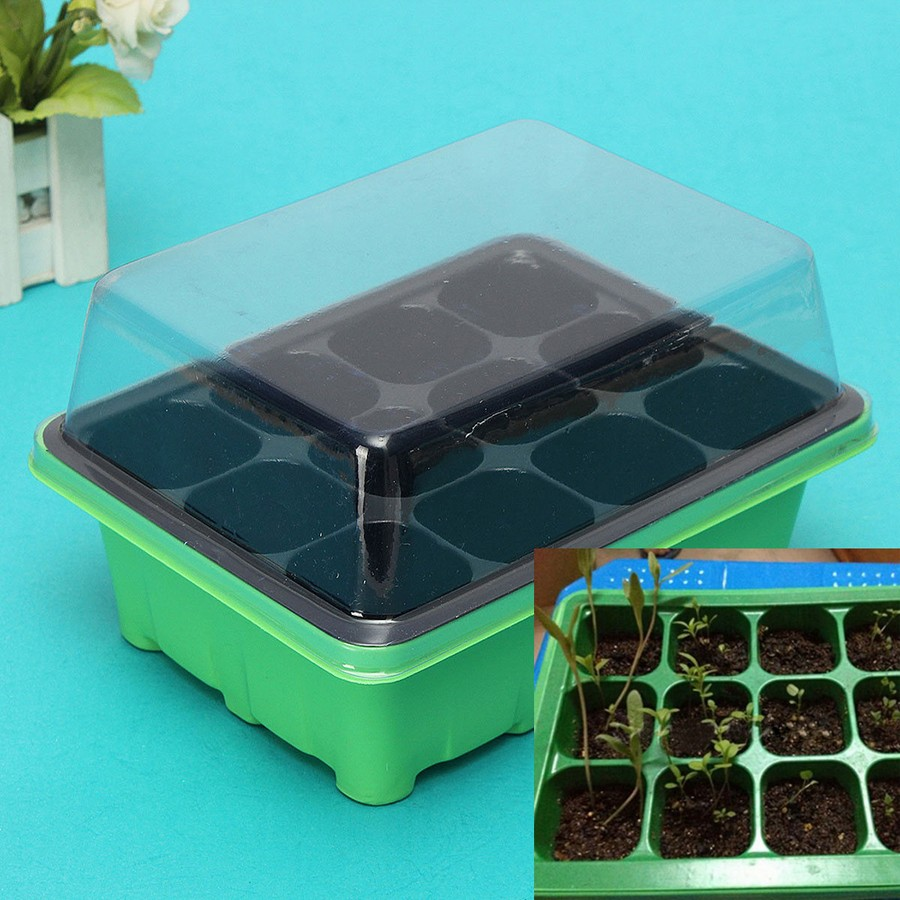 3-plant-and-seed-propagator