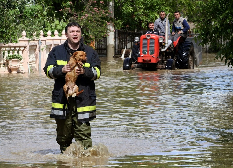 4-flood-rescueman-dog